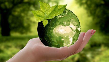 Rozmowy o Czystym Powietrzu – jak pokonać niską emisję?
